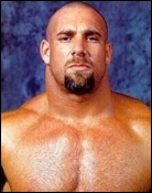 Headshot of Bill Goldberg